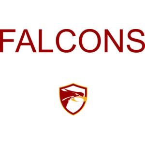Falcons Sports, Club, Activity Template - Replace EDIT TEXT with Sport, Club or Activity Thumbnail
